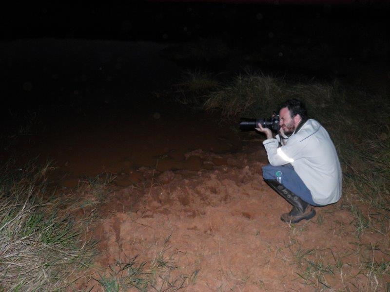 Programa de monitoramento da fauna